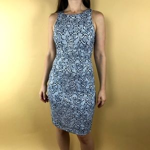 Brand new with tag Leopard Print Dress by Cachè